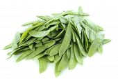 foto of snow peas  - snow peas in front of white background - JPG