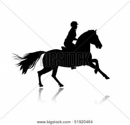 Vector silhouette of horse racing.