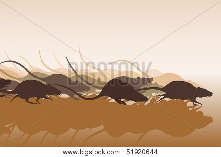 Illustration of many rats racing or running away