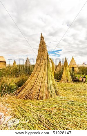 Floating Islands On Lake Titicaca Puno, Peru, South America, Thatched Home. Dense Root That Plants K