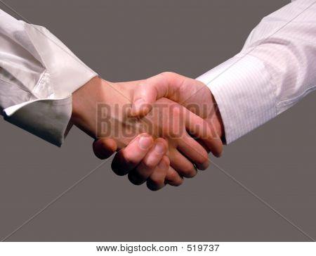Business Handshake, Woman And Man