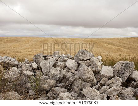 Stonewall In The Countryside