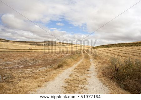 Road In The Spanish Countryside