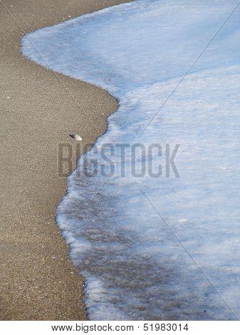 Single shell and foamy wave on beach