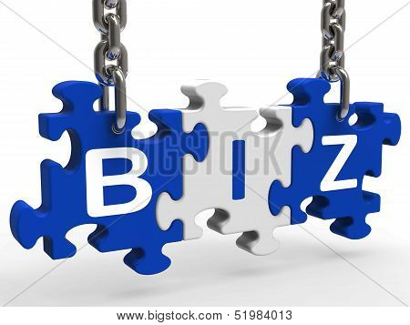 Biz Puzzle Shows Company Or Corporate Business