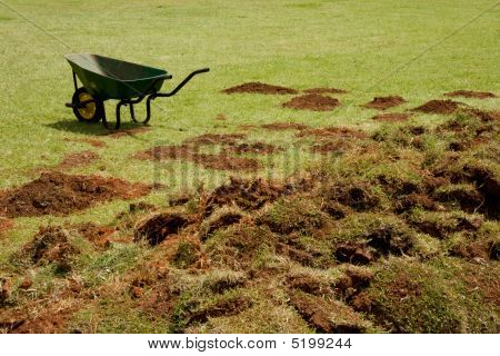 Wheelbarrow And Grass Sods