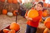 pic of gourds  - Cute Girl Choosing A Pumpkin at A Pumpkin Patch One Fall Day - JPG