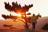 stock photo of lonely woman  - Lonely Tree on Mountain and Woman walking alone to Sunset behind view in orange and pink colors Melancholy solitude emotions concept - JPG