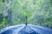 image of save water  - umbrella and rain drops closeup - JPG