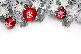 picture of pine-needle  - Christmas decoration with fir branch - JPG