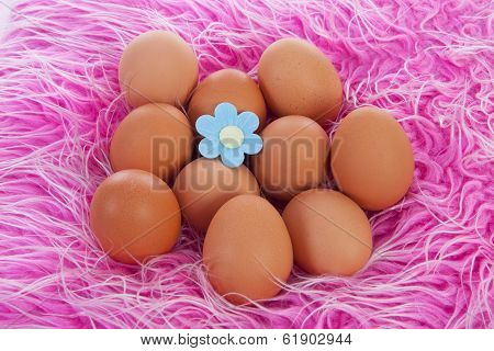 Pile Of Chicken Eggs On Pink Background