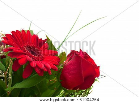 Flowers Copy Space: Red Rose And Gerbera