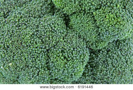 Cabeça de brócolis próximo View