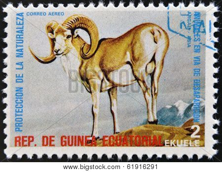 EQUATORIAL GUINEA - CIRCA 1974: Stamp printed in Guinea shows Argali Asia