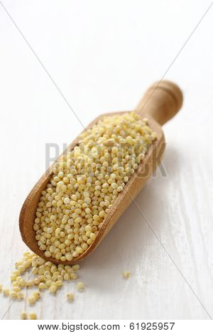Millet Seed Grain In Wooden Scoop On White Background