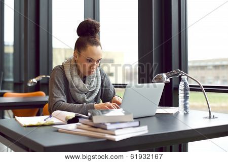 Woman Using Laptop For Taking Notes To Study