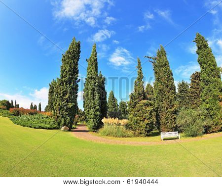 Gorgeous lawn in a park surrounded by cypress trees. To rest at the track is a handy white bench. Photo made with fish eye lens