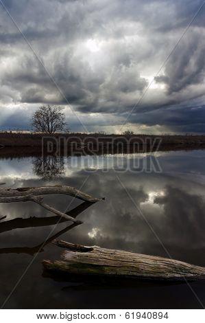 Thunderstorm Over Wildlife Pond