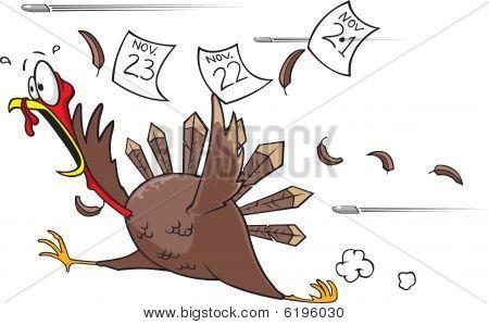 Running scared turkey