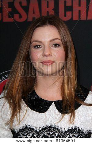LOS ANGELES - MAR 20:  Amber Tamblyn at the