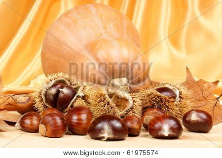 Chestnuts And Pumpkin
