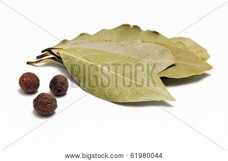 Allspice And Bay Leaf