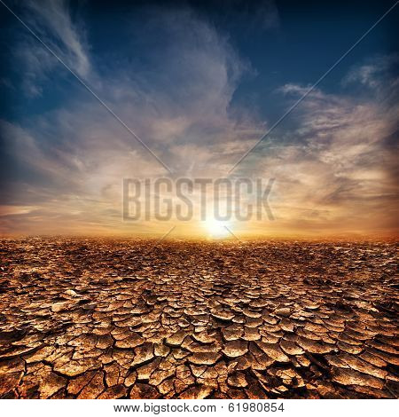 Global warming concept. Lonely drought cracked desert landscape