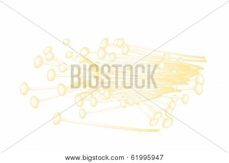 Group Of Enoki Mushrooms On White Background