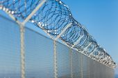 stock photo of coiled  - Coiled razor wire with its sharp steel barbs on top of a wire mesh perimeter fence ensuring safety and security preventing access or the escape of prisoners blue sky background - JPG
