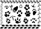 image of bear tracks  - set of different animal and bird footsteps vector illustration - JPG