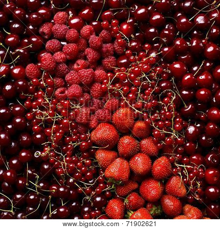 Red colored fruits background