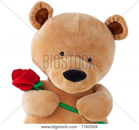 Urso de pelúcia segurando um rosa isolado no branco