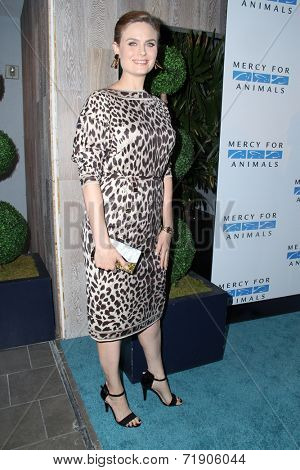 LOS ANGELES - SEP 12:  Emily Deschanel at the Mercy For Animals 15th Anniversary Gala  at London Hotel on September 12, 2014 in West Hollywood, CA