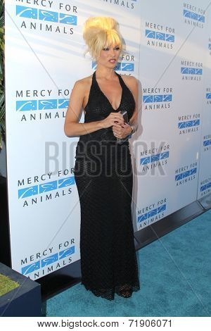 LOS ANGELES - SEP 12:  Pam Anderson at the Mercy For Animals 15th Anniversary Gala  at London Hotel on September 12, 2014 in West Hollywood, CA