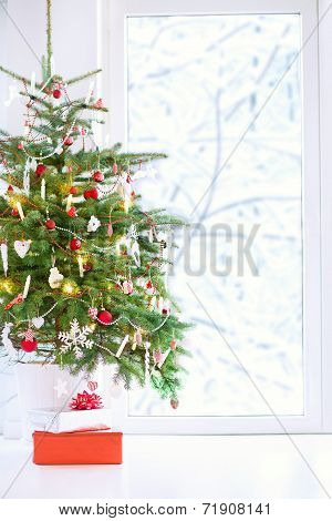 Christmas Tree At A Window