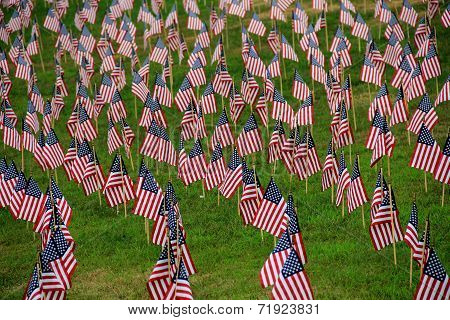 Lawn covered in flags