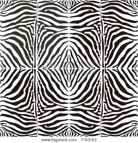 Vector seamless background skin zebra