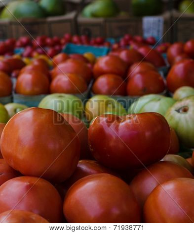 Rows of tomatoes at farmer's market