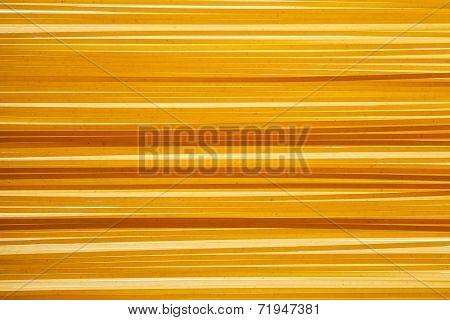 Raw Uncooked Italian Spaghettii Background