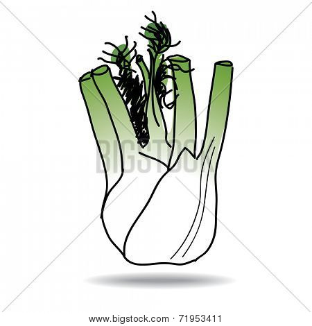 Freehand drawing fennel icon - vector eps 10 illustration