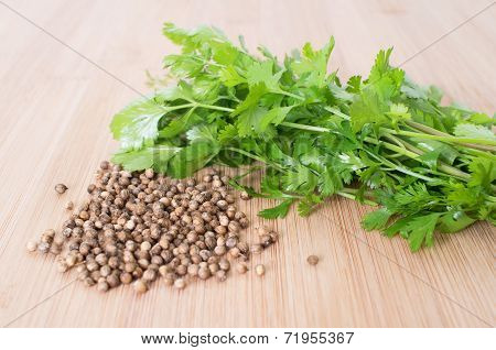 Coriander Leaves And Seeds - Cilantro - Fresh Coriander Leaves And Dried Seeds