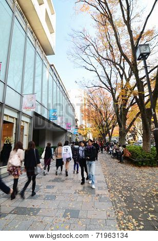 Tokyo, Japan - November 24, 2013: People Shopping At Omotesando Street