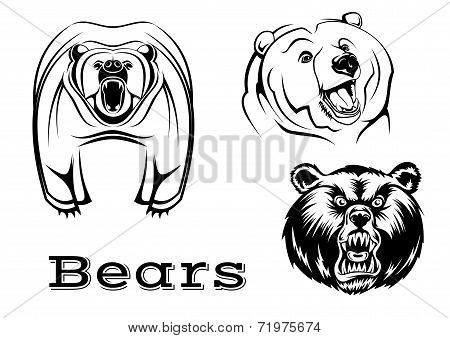 Angry grizzly bears characters