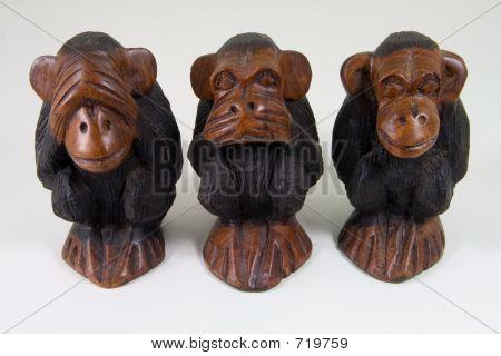 Wise Monkeys That See No Evil, Speak No Evil And Hear No Evil