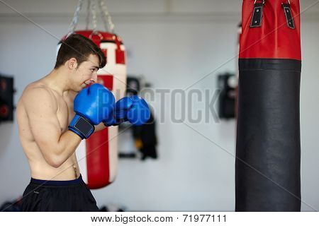 Boxer With The Punching Bag
