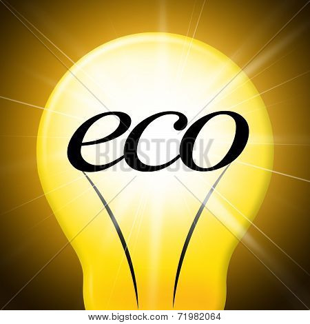 Eco Friendly Shows Go Green And Earth