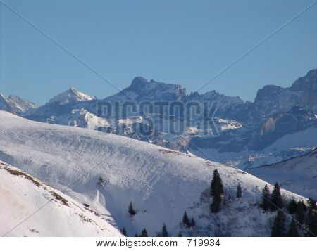 Pastoral Swiss