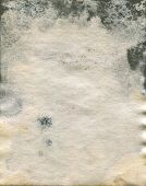 picture of saddening  - Damaged and Moldy old watercolor paper - JPG
