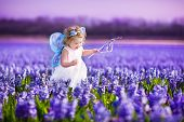 image of flower girl  - Portrait of an adorable toddler girl in a magic fairy costume and flower crown in her curly hair playing with a wand in a beautiful field of purple hyacinths in Keukenhof Holland on windy spring day - JPG
