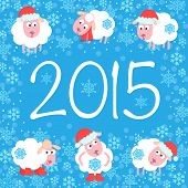 picture of sheep  - Cute card for Christmas and New Year - JPG